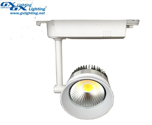 den-led-roi-ray-gd-cob-3007
