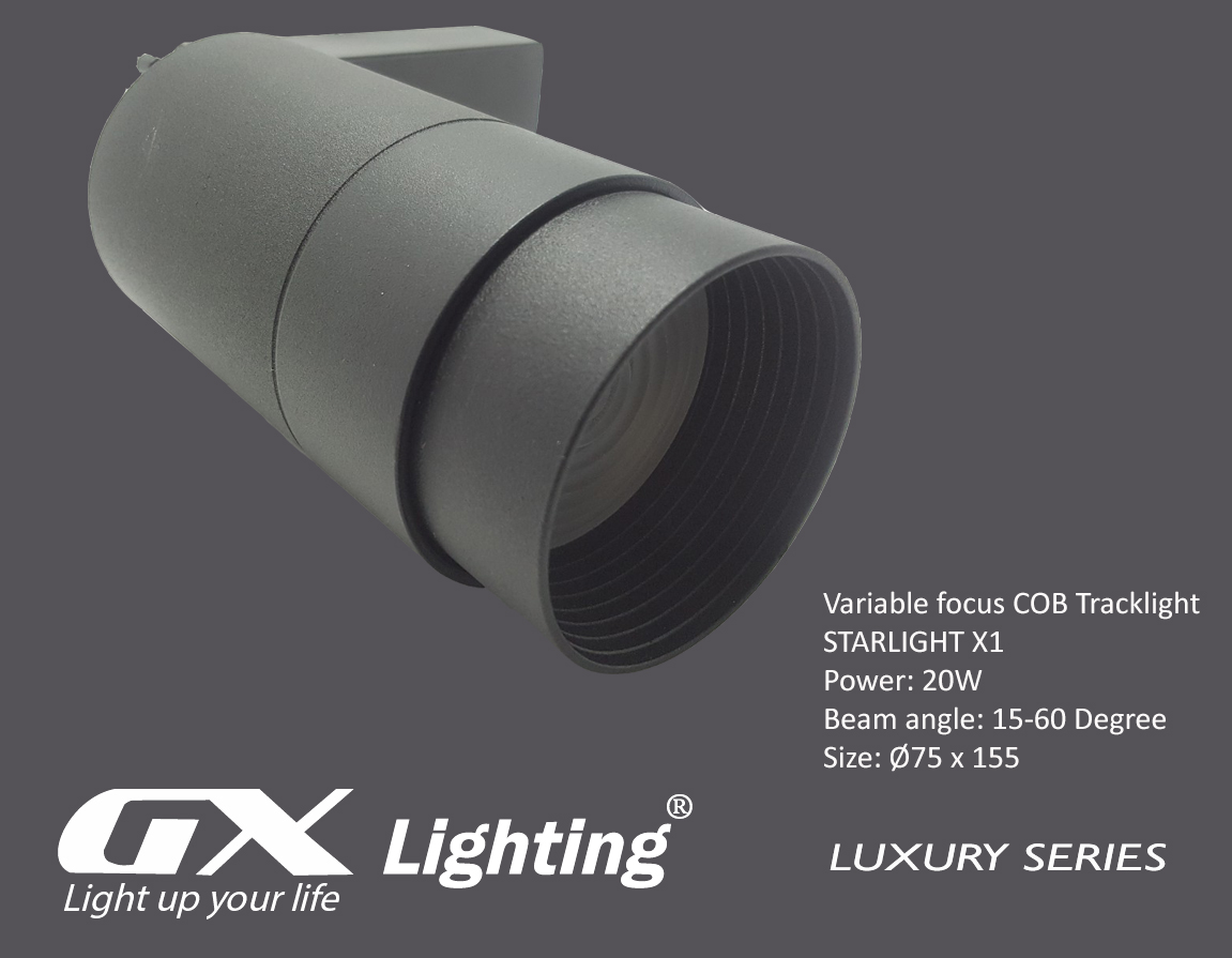 den-led-roi-ray-starlight-x1-20w